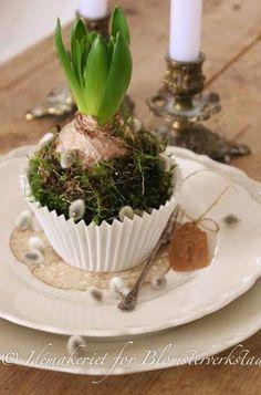 Zo simpel en zooo leuk! Borden, cupcakebakje, hyacintbol, knopjes van wilgenkatjes, beetje mos en klaar! Hierbij kan je je fantasie lekker de vrije loop laten.