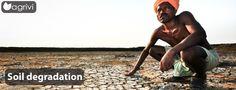 Soil degradation   Agrivi #environment #important #GlobalIssue