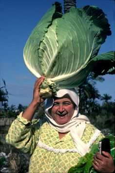 Woman with a cabbage on her way to market, Aboukir