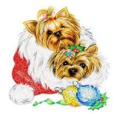 2 Yorkies Christmas