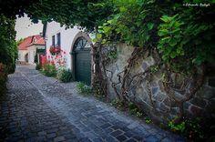 A Dunakanyar gyöngyszeme - Szentendre - Dunántúl - Hungary. Heart Of Europe, Budapest Hungary, Bulgaria, Homeland, Italy Travel, Beautiful Places, Landscape, Country, Traveling