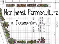 https://www.kickstarter.com/projects/1122699426/northeast-permaculture-a-documentary Northeast Permaculture : a Documentary by Costa Boutsikaris https://d2pq0u4uni88oo.cloudfront.net/projects/150444/video-111971-h264_high.mp4