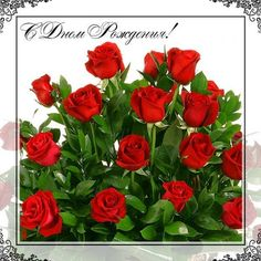 С Днем рождения цветы 17 - clipartis Jimdo-Page! Скачать бесплатно фото, картинки, обои, рисунки, иконки, клипарты, шаблоны, открытки, анимашки, рамки, орнаменты, бэкграунды