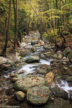 Kissos stream in Mount Pelion (Thessaly)