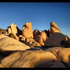 Close up of one of the rock formations at White Tank, Joshua Tree National Park #california #joshuatree #rock #sandstone #geology #landscape #sunset #light  (at Joshua Tree National Park)