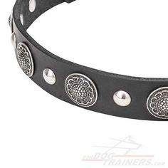 Don't miss the best dog collar for your pet! Order Fashionable Leather Dog Collar with Plates and Half-Ball Studs! Dog Harness, Dog Leash, Dog Training Equipment, Every Dog Breed, Dog Muzzle, Leather Dog Collars, Dog Supplies, Dog Owners, Best Dogs