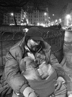 It often happens that a man is more humanely related to a cat or dog than to any human being. ~ Henry David Thoreau