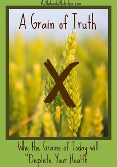 A Grain of Truth: Why the Grains of today are detrimental to your health & will make you fat and sick. By Jenny at www.AuNaturaleNutrition.com