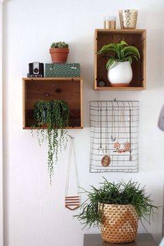 #interior #decor #styling #plant #shelves