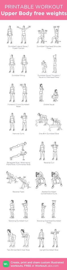 Upper Body free weights –my custom workout created at WorkoutLabs.com • Click through to download as printable PDF! #customworkout