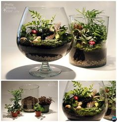 Wine Glass #Terrarium- DIY Mini Fairy Terrarium Garden Ideas