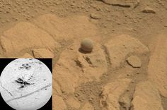 Unusual Rocks near Pahrump Hills on Mars via... | Naples Wine Aficionados