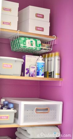 Organized Radiant Orchid Bathroom Closet Reveal - Polished Habitat