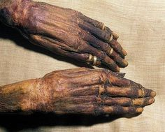 Mummified hand of Yuya. Grandfather of Akhenaten and great grandfather of Tutankhamun. An example of the skill of the embalmer in ancient Egypt, the mummy of this powerful dynasty courtier was brilliantly preserved. Ancient Aliens, Ancient Egypt, Ancient History, Machu Picchu, Mummification Process, Cairo Museum, Egypt Mummy, Canopic Jars, Egyptian Mummies