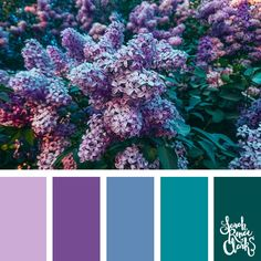 25 Color Palettes Inspired by the Pantone Fall/Winter 2018 Color Trends Purple and teal Purple Color Schemes, Color Schemes Colour Palettes, Spring Color Palette, Colour Pallette, Color Palate, Color Trends, Color Combos, Purple Palette, Lavender Color Scheme
