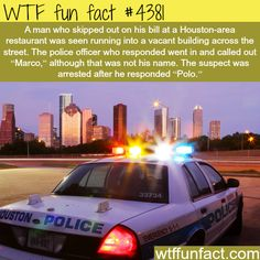 Funny police moments -   WTF fun facts
