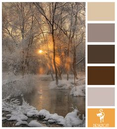 Winter Sun: Grey, Beige, Brown, Stone, Sand, Orange - Colour Inspiration pallet