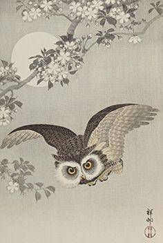 "Japanese Art Print ""Cherry Blossoms and Owl (Sakura ni Fukuro)"" by Ohara Koson. Shin Hanga and Art Reproductions http://www.amazon.com/dp/B016WJFF2A/ref=cm_sw_r_pi_dp_aUxswb1WHT6VF"