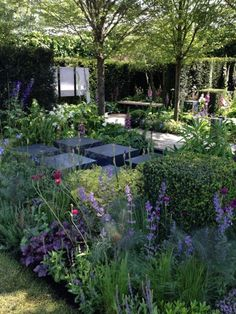 Sneak preview of the Chelsea Flower Show 2014 | The Enduring Gardener