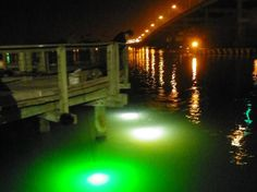 View of three Hangover fishing lights. Dock Lighting, Water Lighting, Lighting System, Underwater Led Lights, Underwater Fish, Boat Drawing, Fishing Lights, Fishing Hole, Kayak Boats