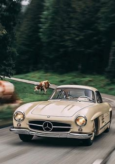 15 UNIQUE WEEKEND GETAWAY SPOTS IN BELGIUM Old Mercedes, Mercedes Benz 300, Classic Mercedes Benz, Mercedes Concept, Pretty Cars, Cute Cars, Old Vintage Cars, Old Cars, Volkswagen