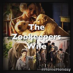My review of Holocaust drama The Zookeepers Wife is now published on my blog #lulubysplace why not have a look  #moviemonday #review #movie #truestory #tearjerker