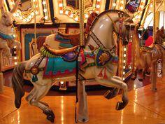 Carousel horse ♥