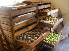 Root cellar storage/ what to do AFTER harvest… Great idea for bulk storage, to. Root cellar storage/ what to do AFTER harvest… Great idea for bulk storage, too. Homestead Survival, Survival Food, Survival Tips, Survival Quotes, Survival Supplies, Survival Shelter, Emergency Preparedness, Off The Grid, Food Storage