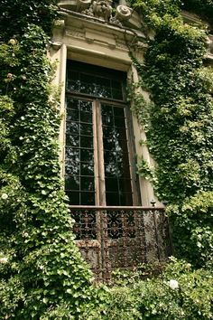 centuriesbehind:  bluepueblo: Ivy Window, Lake Como, Italy photo via isabeau