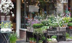 Amsterdam's most inspirational florist - Gerda's bloemen en planten in The Nine Streets
