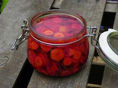 pickles de cenoura colorida2