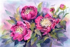 Watercolor Paintings by Rachel McNaughton Watercolor Cards, Watercolor Flowers, Watercolor Paintings, Flower Paintings, Watercolour, Art Floral, Flower Images, Flower Art, Illustration
