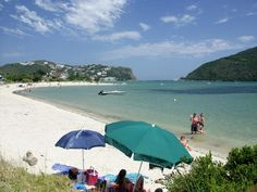 Bollard Bay Beach on Leisure Isle is a model family beach with safe swimming in shallow waters. Knysna, South Africa, Trip Advisor, Swimming, Patio, Island, Outdoor Decor, 111, Shallow