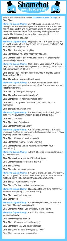 A conversation between Chat Blanc and Marinette Dupain-Cheng