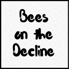 Bees are dying at an Alarming rate. What are the consequences? Bee Cupcakes, Bees, Honey Bees