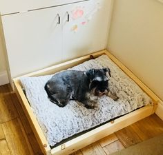 Diy dog bed for a corner 💕💕 Love it so much 💕💕 So glad I made it for her