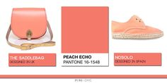Peach Echo Pantone 2016