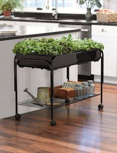 Mobile Salad Garden {Gardener's Supply Co.}