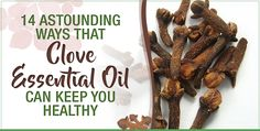 Clove, the incredibly aromatic spice used around the world, boasts an enormous variety of health benefits in addition to its unique flavoring abilities. Clove essential oil has antimicrobial, anti-inflammatory, antiviral and anti-fungal properties that make it an ideal treatment for common ailments like oral health problems, headaches and fungal infections.