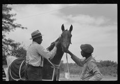 [Untitled photo, possibly related to: Elaborate preparations are made for entries in Shelby County Horse Show and Fair, Shelbyville, Kentucky]