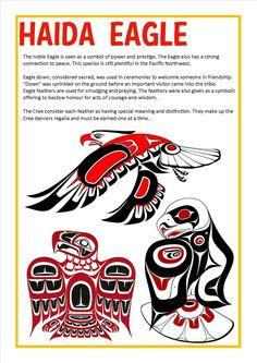 Haida Eagle Native American Wisdom, Native American Design, Native Design, American Indian Art, Native American Totem Poles, Arte Haida, Haida Art, Haida Tattoo, Eagle Art