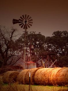Country Love & a windmill Country Farm, Country Life, Country Girls, Country Living, Country Roads, Farm Windmill, Old Windmills, Wind Of Change, Country Scenes