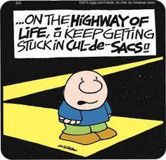 Ziggy - But I love living in a cul-de-sac! :p