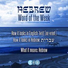 "This week's ""Hebrew Word of the Week"" is Ivrit / עברית"