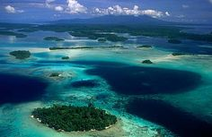 The Solomon Islands. Nearly 1,000 islands that have not been subject to over-tourism yet. A diver's paradise.