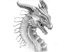 excellent-pencil-drawings-of-dragon-8