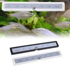 Suitable for fish tank or reptile case. 1 pc of fish tank lamp only,other accessories demo in the picture are not included! Suitable for thick fish tank. 1 x Fish Tank Lamp.