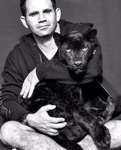38 best black jaguar white tiger foundation images   big cats, black