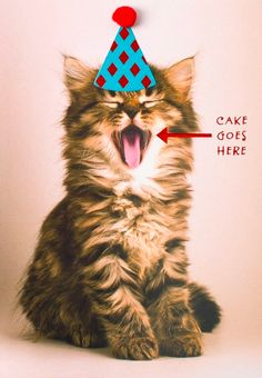 It's our birthday! Sorry, no cake - but UGallery.com is 20% sitewide. Use code #HBD20