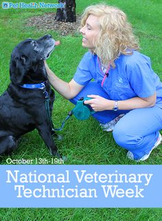 This week (#october 13th-19th) is #National #Veterinary Technician Week! We'd be lost without our #vettechs!! They help keep our #pets safe!